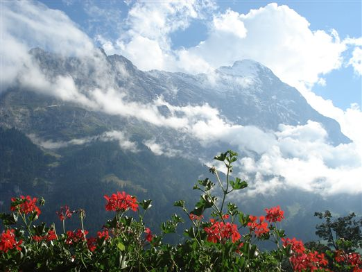 2008年スイス 012.jpg